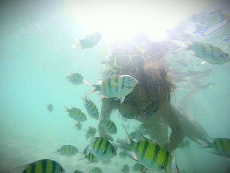 Snorkeling_KhoPhiPhi