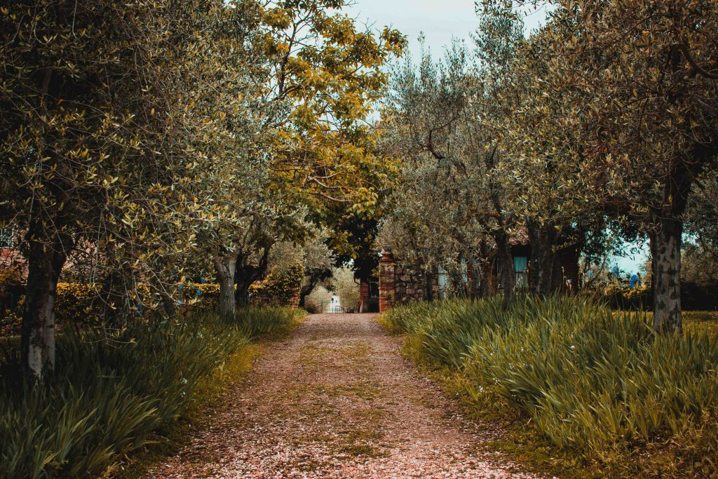 Italien, Toskana, Florenz