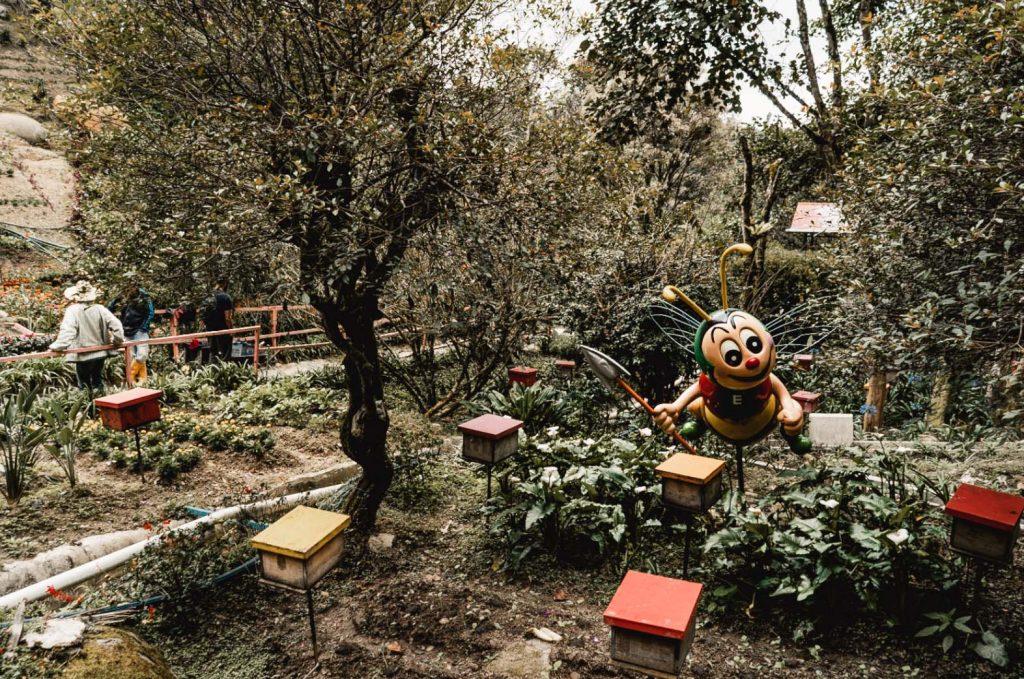 Bee Farm, Malaysia, Cameron Highlands