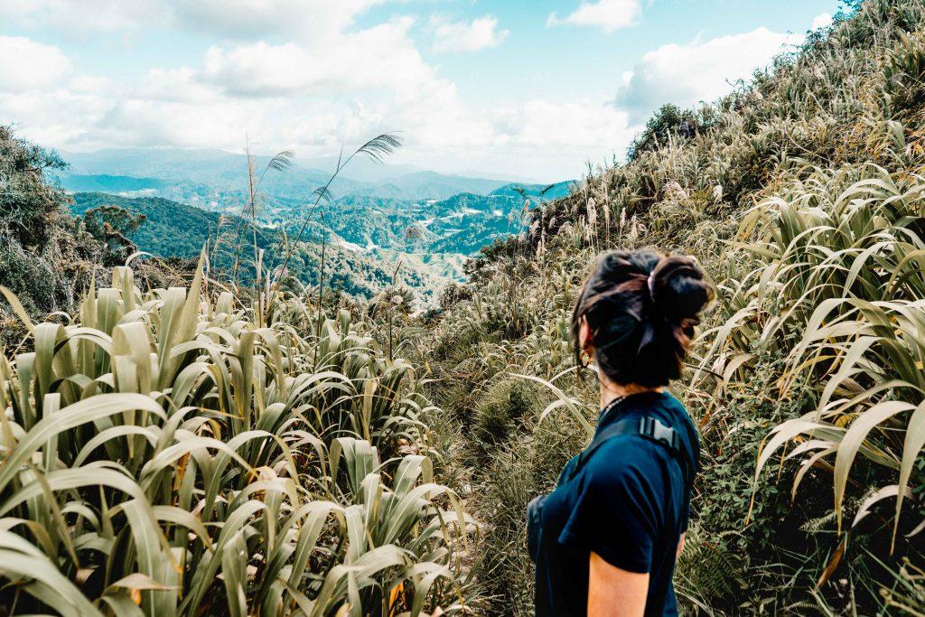 Dschungel Wanderung, Cameron Highlands