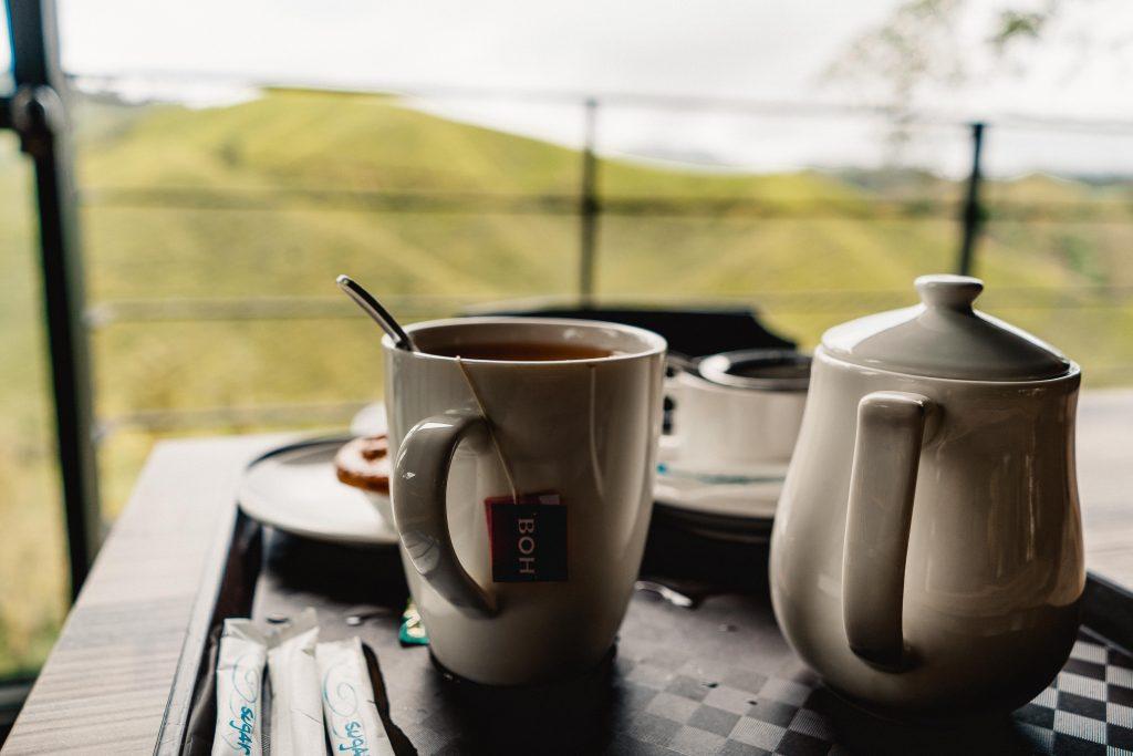 Cameron Highlands, BOH Teeplantagen